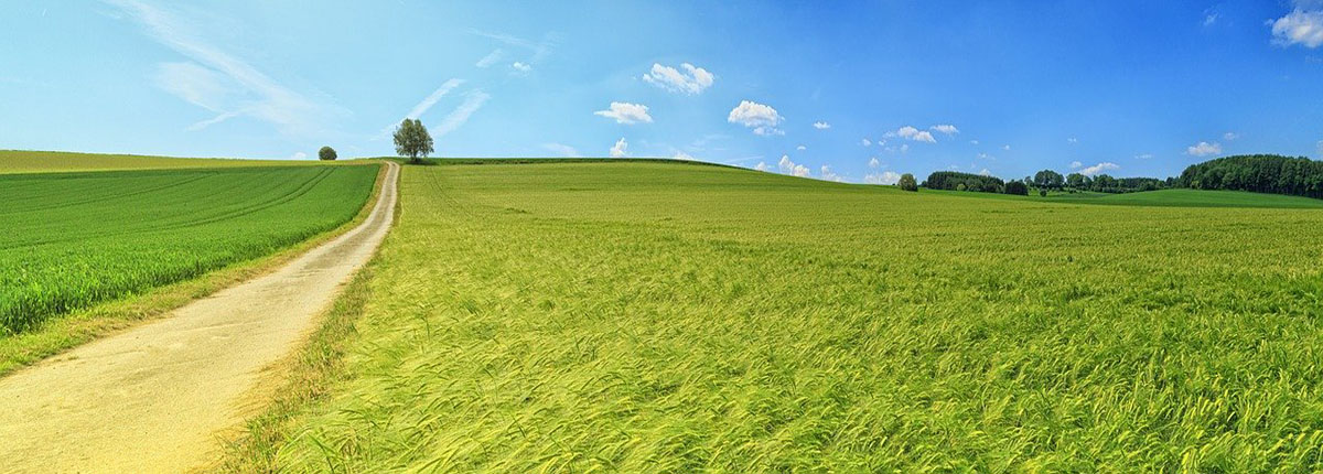 panorama-greenroad
