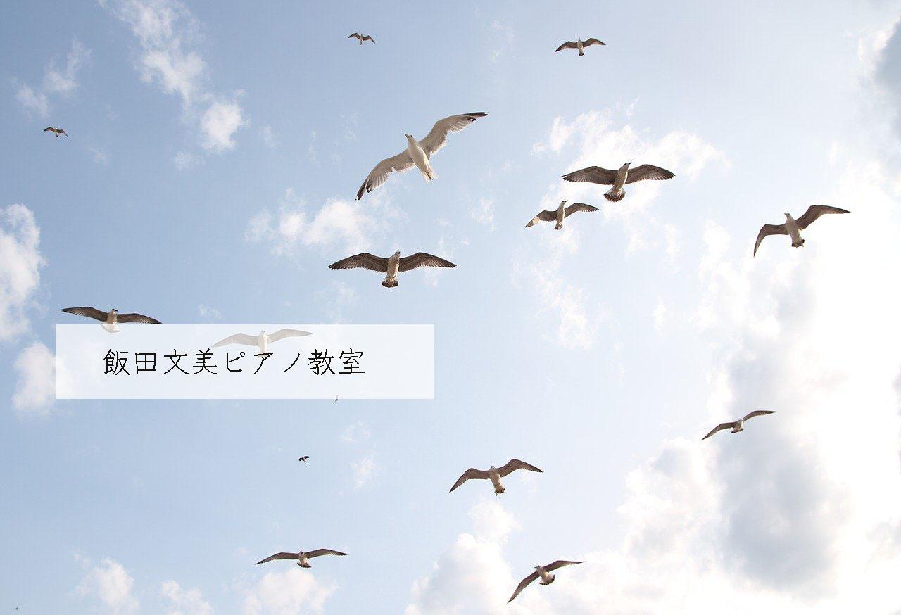 topbirds
